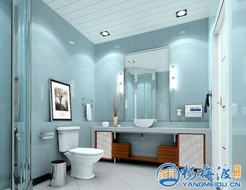 装修效果图 卫生间装修马桶图片 带您领略家居卫浴新时尚 杨